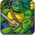 忍者神龟-双龙出海