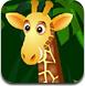 动物森林找数字