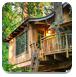 逃离森林蘑菇树屋