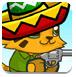 墨西哥的猫