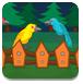 鸟类的避难所