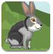 兔子河岸逃脱
