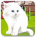 解救可爱白猫