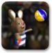 瘋狂兔子打排球