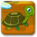 小乌龟回家