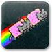 霓虹貓接金幣