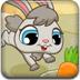 小灰兔吃胡萝卜