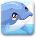 照顾小海豚